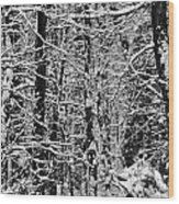Monochrome Winter Wilderness Wood Print