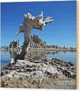 Mono Lake 5709 Wood Print