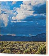 Monsoons In July Wood Print