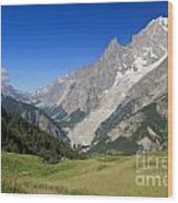 mont Blanc from Ferret valley Wood Print