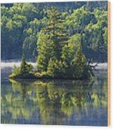 Mont Tremblant National Park Wood Print