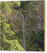 Montagne D'ambre National Park Madagascar 3 Wood Print