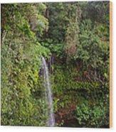 Montagne D'ambre National Park Madagascar 5 Wood Print