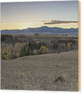 Montana Back Country Wood Print by Dana Moyer