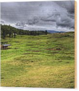 Montana Breeding Ground Wood Print