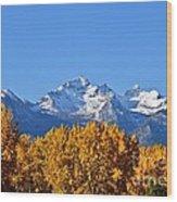 Montana Fall Wood Print