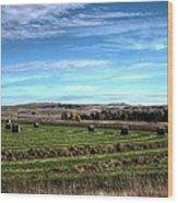 Montana Hayfield Wood Print