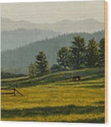 Montana Morning Wood Print by Crista Forest