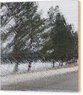 Montana Weather Report Wood Print