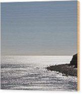 Montauk Beach And Bluff Wood Print