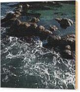 Monteray Bay Wood Print