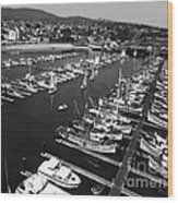 Monterey Marina With Fishing Boats In Slips Sept. 4 1961  Wood Print