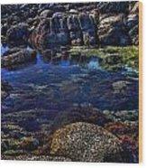 Monterey Pool Wood Print