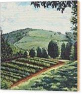 Monticello Vegetable Garden Wood Print