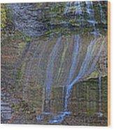 Montour Falls Fall Panorama Wood Print