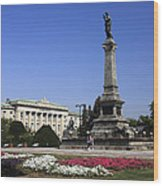 Monument Of Freedom Wood Print