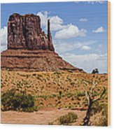 Monument Valley - Elephant Butte Wood Print