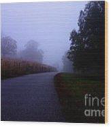 Moody Autumn Pathway Wood Print