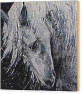 Moody Blues Wood Print
