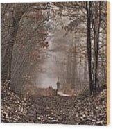 Moody December  The Feel Wood Print