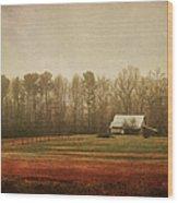 Moody Morning Stillness Wood Print