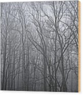 Moody Outlook Wood Print