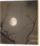 Moon Behind Branches Wood Print by Deborah Smolinske