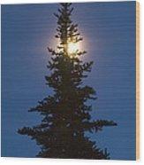 Moon Behind Spruce Wood Print