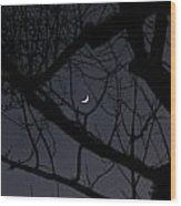 Moon Beyond Tree IIi Wood Print