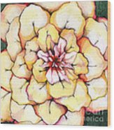 Moon Flower Out Of The Bloomers And Onto The Bloom Wood Print