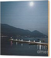 Moon Light And A Port Wood Print