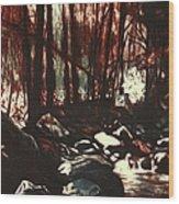 Moon Light Near The Cascades Wood Print