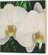 Moon Orchid Pair Wood Print