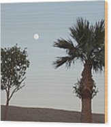 Moon Over Baja Desert Wood Print