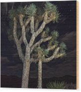 Moon Over Joshua - Joshua Tree National Park In California Wood Print