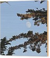 Moon Over Morro Bay Wood Print