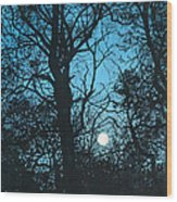 Moon Over Pittsburgh Wood Print
