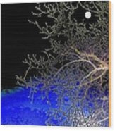 Moon Over Sapphire Pond Wood Print