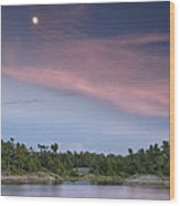 Moon Over The Bay Wood Print