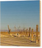Moon Rise Over Waste Land Wood Print