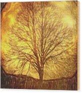 Moon Tree Wood Print