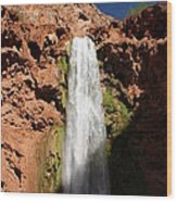 Mooney Falls Grand Canyon Wood Print