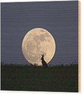 Moongazer Wood Print by Steve Adams