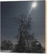Moonlight And The Snow Wood Print