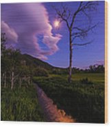 Moonlight Meadow Wood Print by Chad Dutson