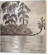 Moonlight Wakulla Springs Wood Print