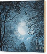 Moonlight With Forest Wood Print