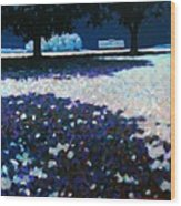 Moonlit Acres Wood Print