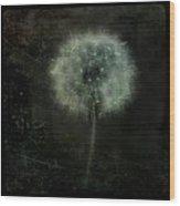 Moonlit Dandelion Wood Print