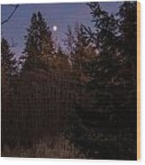 Moonlit Evening Wood Print